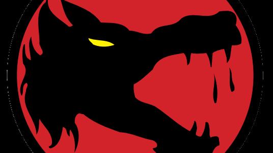 Wolf's Dragoons Force Pack – Mögliche Mechliste